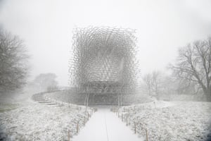 The Hive at the Royal Botanic Gardens, Kew, UK during winter by Wolfgang Buttress
