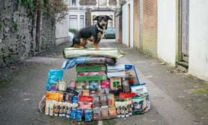Helena's dog, Charlie, with his Brexit stockpile.