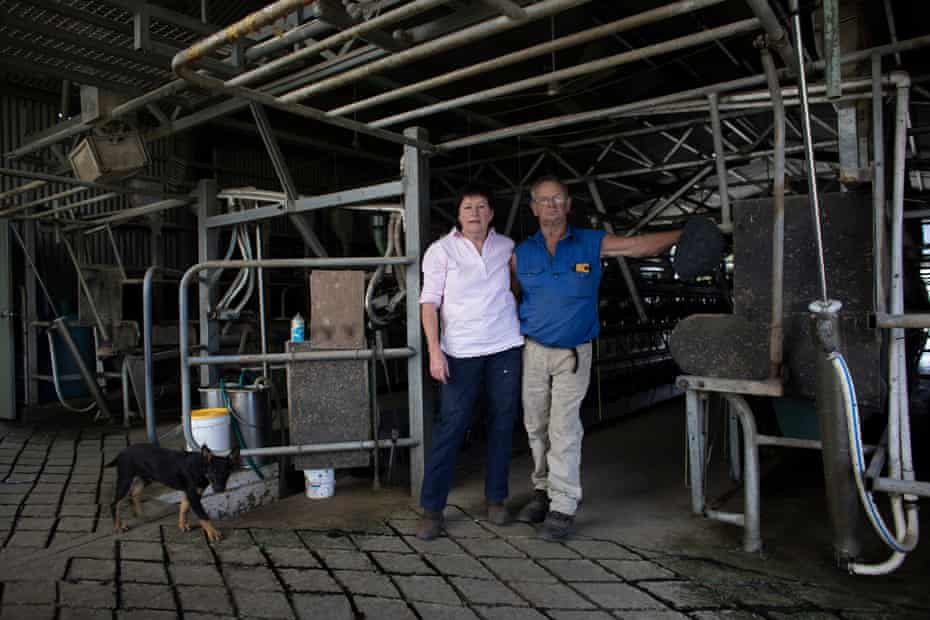 June and Richard Tarlinton in their dairy on Wandellow at Wandella