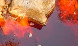 Cyanide and iron have been found in the San Sebastián River, in El Salvador's La Unión state
