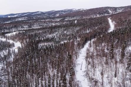 Iditarod mushes onward in Alaska as fans urged to skip finish in Nome | Iditarod