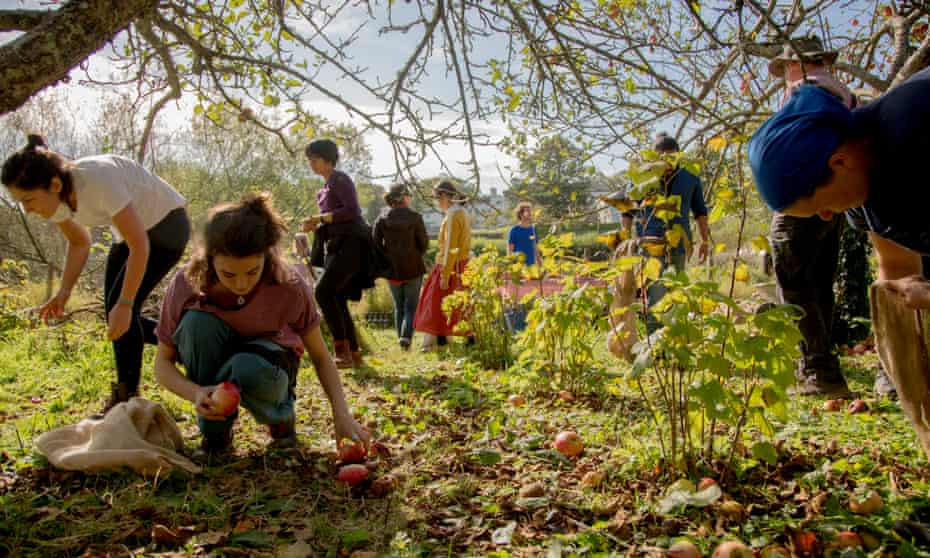 Gardening retreat at Schumacher College, Devon.
