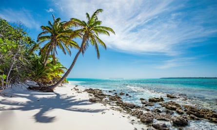 Palm trees on Cocos Keeling atoll.