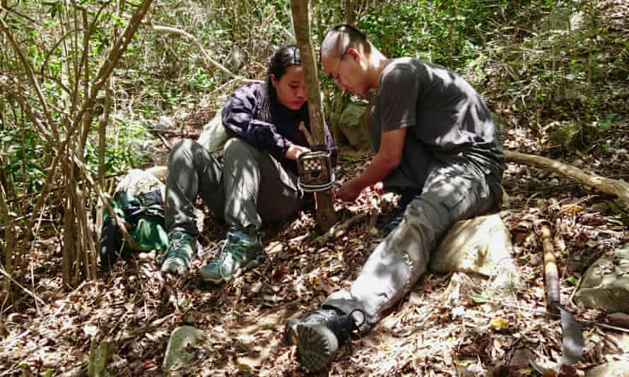 Members of the team install a camera trap