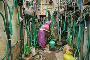Chennai, IndiaA woman uses a hand pump to fill up a container with drinking water