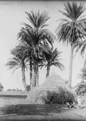 """Traditional East African """"Tukul"""" house, near the site of Meroë, 1910"""