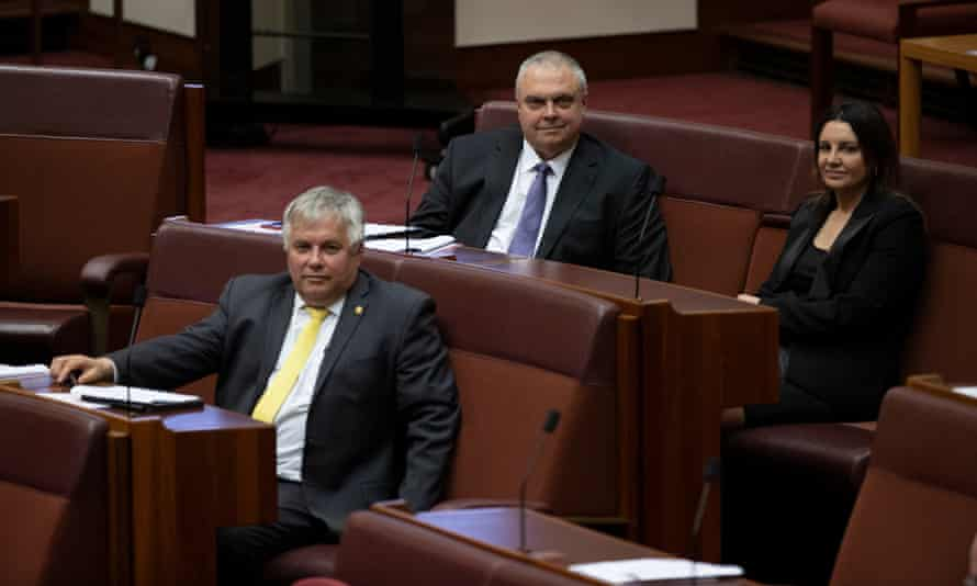 Rex Patrick, Stirling Griff and Jacqui Lambie in the senate during voting on the jobs-ready graduates