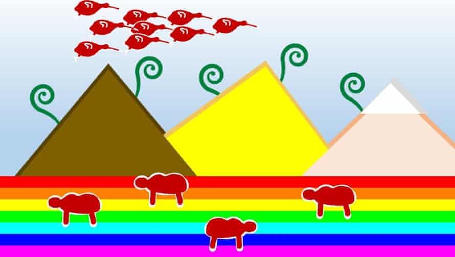 Logan Wu NZ flag