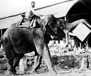 An elephant transports teak in Rangoon, circa 1930.