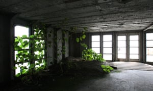 Plants grow in the interior of the SS United States. The conservancy group hopes to repurpose it as a museum and mixed-use destination