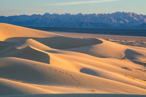 Sand dunes at the Mojave Trails National Monument, an area spanning 640,000 hectares