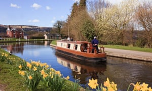 Narrowboat navigating the Llangollen canal with daffodils in spring