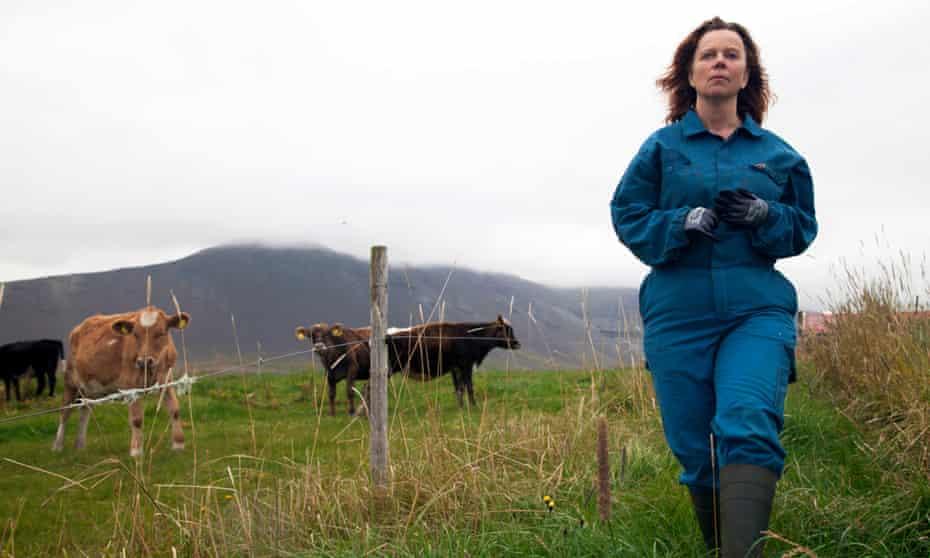 An Erin Brokovich-style mission to expose … Arndís Egilsdóttir as dairy farmer Inga in The County.