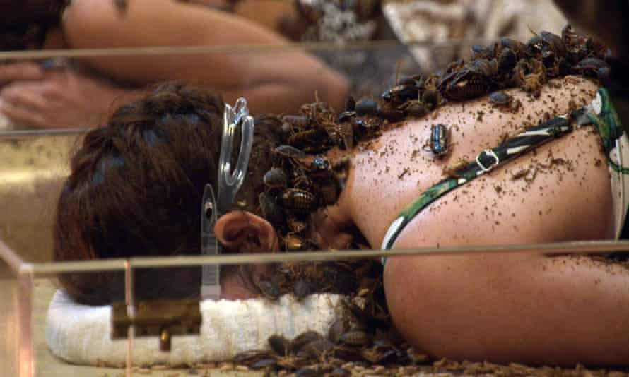 Concerns have been raised over the show's use of cockroaches, whip scorpions, mealworms and crayfish in bushtucker trials.