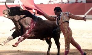 Spanish matador Ivan Fandino and an injured bull