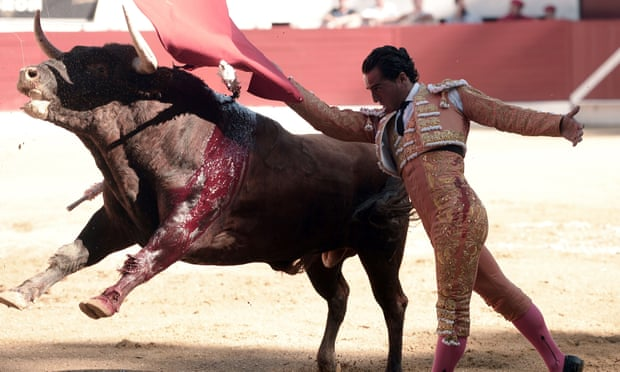 POLL: Should the cruel sport of bullfighting be banned?