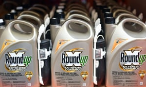 Shares in German chemicals and pharmaceuticals giant Bayer surged as investors reacted to reports the firm is considering a settlement worth billions of dollars for lawsuits over the controversial weedkiller glyphosate.