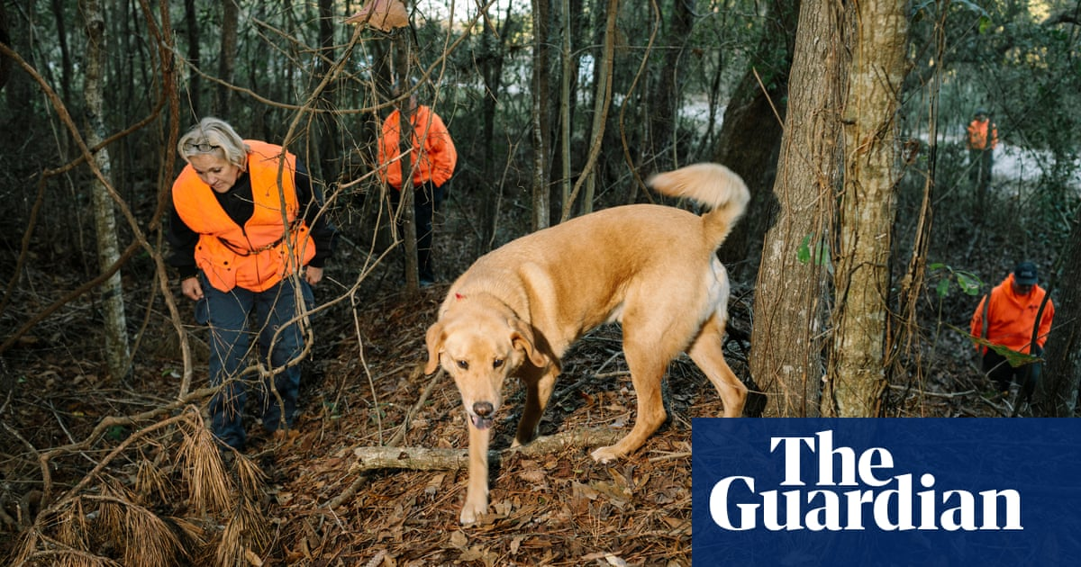 'Trust your dog': extraordinary pets help solve crimes by finding bodies