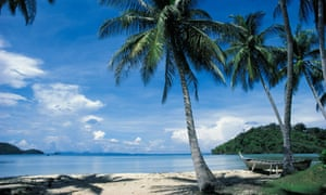 Palm trees at beach island of Ko Yao Yai near island of Ko Phuket, Thailand.