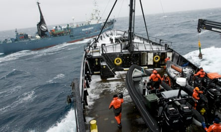 Sea Shepherd conservationists on board their ship, the Steve Irwin