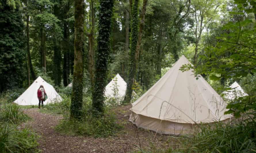 The camp is in a wooded area of the Sharpham estate.