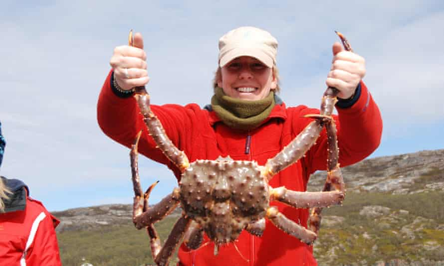 A king crab caught on a RIB tour from Kirkenes