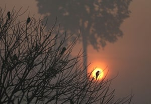 The sun rises amid smoke from a burning tract of Amazon jungle as it is cleared by loggers and farmers near Porto Velho, Brazil