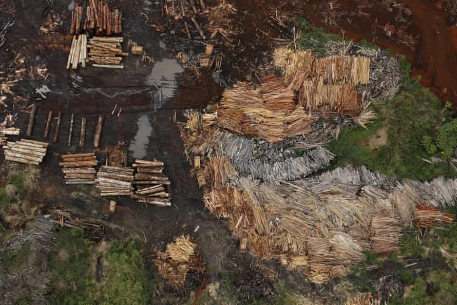 Sawmills processing illegally logged trees from the Amazon rainforest near Rio Pardo, Brazil.