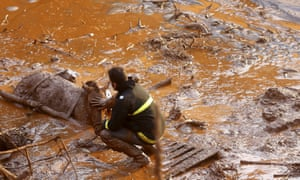 A rescue worker touches the face of a horse as they try to save it at Bento Rodrigues district