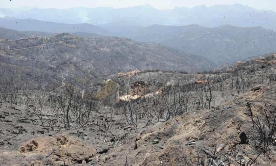 Burned hillsides after forest fires, near Tizi Ouzou, Kabyle, Algeria, 11 August 2021