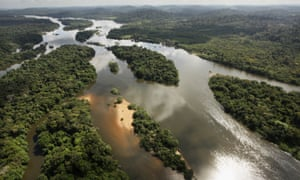 The stomach contents of fish in the Xingu River have revealed plastic particles.