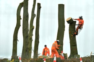 HS2 contractors fell trees at a section of an iron age earthwork in Great Missenden, England