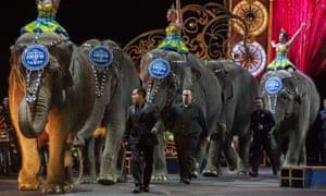 Ringling Bros Barnum & Bailey Circus elephants retired