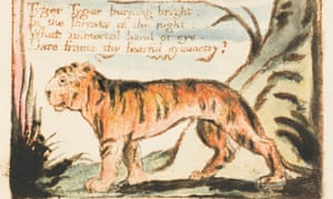 Detail from an illustrated page of William Blake's poem The Tyger