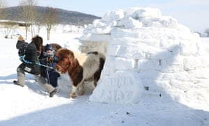 Anna (L) and Max play with their ponies Ted and Papaya at -8 degrees Celsius in an igloo in Langenenslingen, southern Germany.