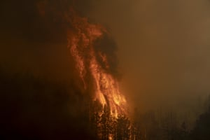 Fire burns through trees during the Caldor Fire in Kirkwood.
