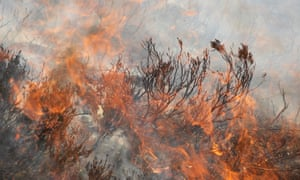 Muirburn (heather burning) on an upland grouse moor in Glenfeshie, Scotland.