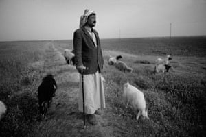 Shepherd Ibrahim Abu Farham in Moshrefa village in 2016, next to land ploughed for the first time since the war