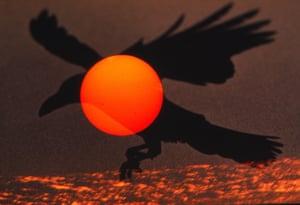 Ravens: Noctambulant Flight, 1980