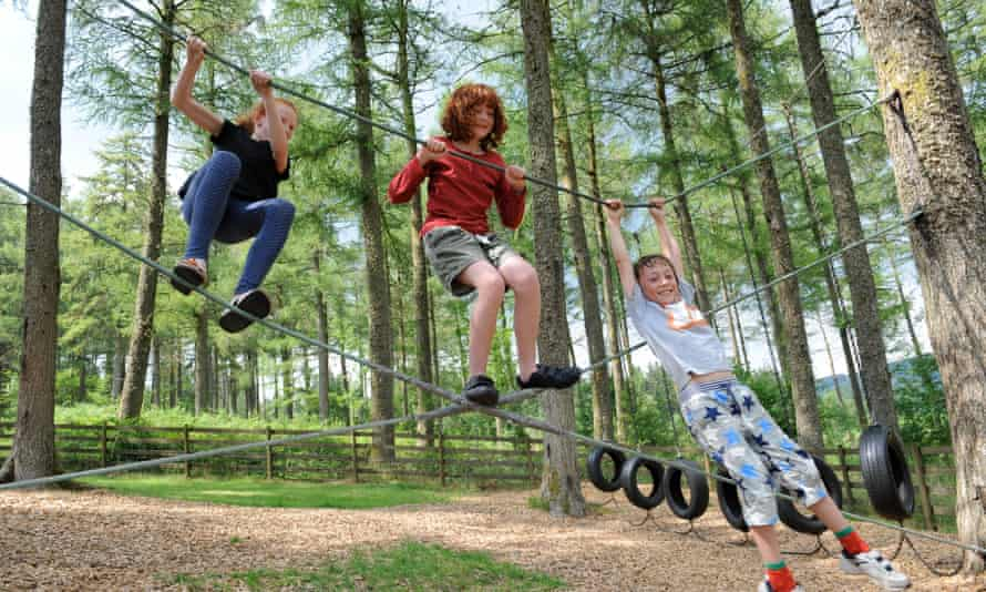 A forest adventure park in Wales.