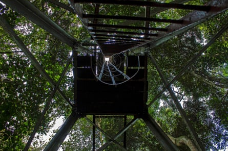 A watch tower in the Zika forest