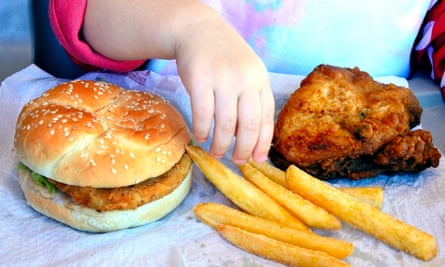 Little girl about to eat fast food: chicken burger, french fries and fried chicken