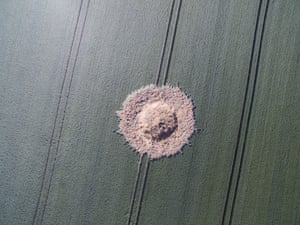A crater on a corn field after a bomb from the second world war exploded in Halbach.