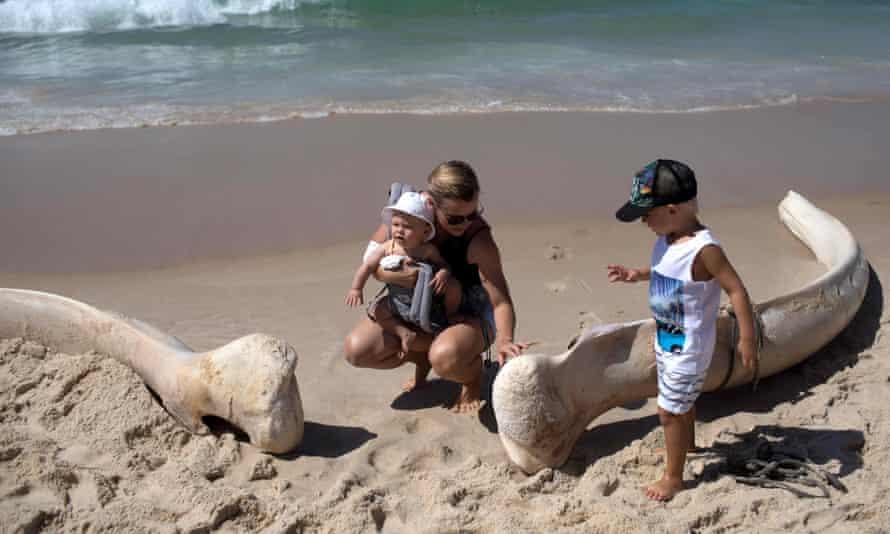 A woman touches a bone found at Ipanema beach