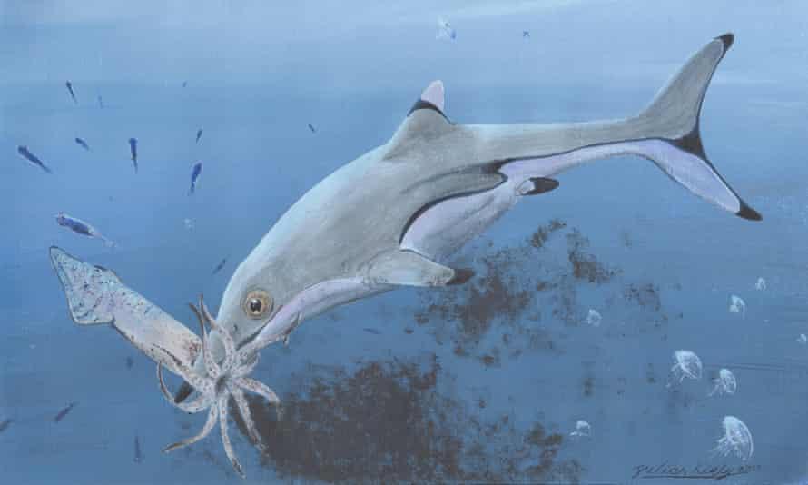 Reconstruction of a newborn Ichthyosaurus communis