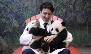 Justin Trudeau cuddles the first pandas born in Canada