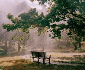 A bench is seen in the dappled sunlight