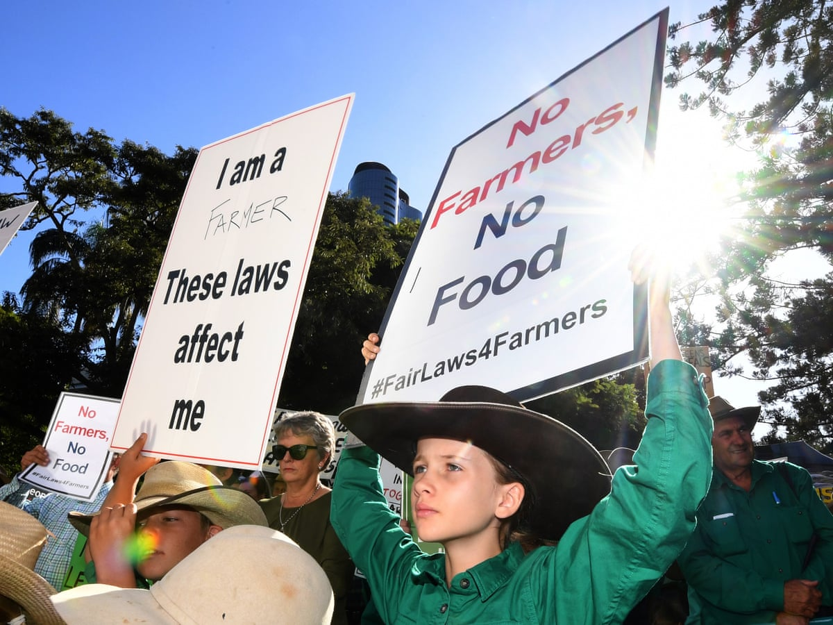 Queensland farmers rally against laws to curb land clearing   Environment    The Guardian