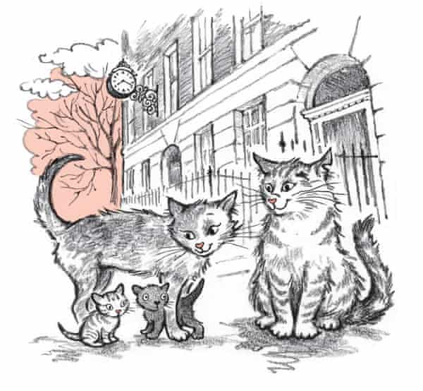 The cat from Polly Faber's book.  Illustration by Clara Vulliamy
