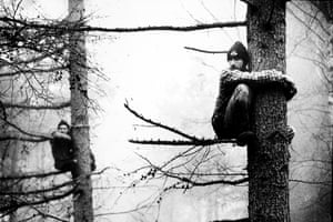 Activists sit in trees on the route of the Newbury bypass. They often had to sit like this for up to eight hours.